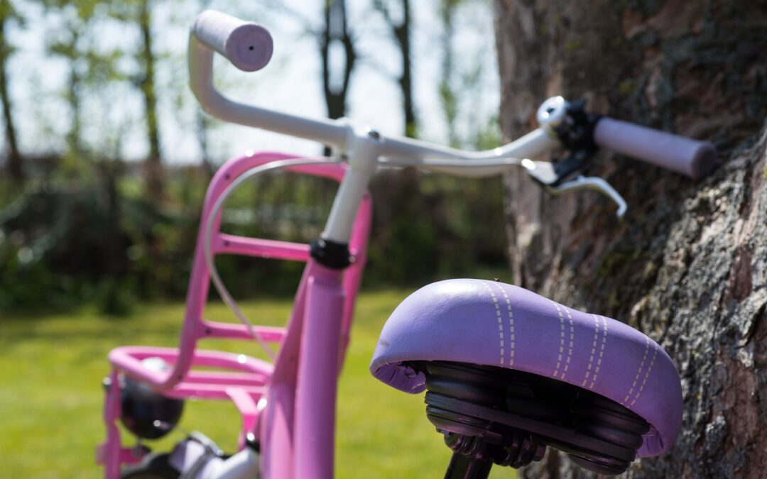 """""""Bikes & Music"""" Nonprofit Launched by Small Business Duo"""